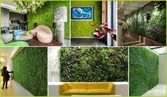 Aprendé a hacer jardines verticales en tu hogar