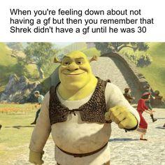Shrek is love, Shrek is life Shrek Funny, Shrek Memes, Dankest Memes, Funny Jokes, Hilarious, Movie Memes, Funniest Memes, When Youre Feeling Down, Memes Of The Day