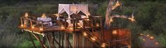 Spend a true night outdoors in a tree house! A secure and lavish platform under the African stars...