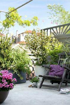 Roof top gardens.
