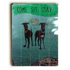 Come Sit Stay by Artist Fabian Ojeda Wood Sign