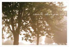[ coale design co. ]