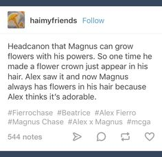 Magnus Chase Source by apetersdeal Percy Jackson Characters, Percy Jackson Memes, Percy Jackson Books, Percy Jackson Fandom, Rick Riordan Series, Rick Riordan Books, Solangelo, Percabeth, Magnus Chase Books