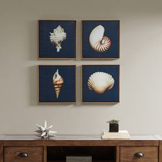 """Ocean Seashells is a dynamic 4-piece 12"""" x 12"""" framed set. The set shows 4 different realistic seashells against a lush navy background."""
