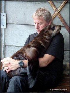 "Love is love. Rescued Seal. Cape Fur Seal, South Africa. ""So what do you do with those who have no parents, the abandoned, the weak, those who would be dead if not rescued; you give them what they need, you treat them like a seal wants to be treated, you touch, you nurture."" ~ Coenrad J Morgan SEAL ALERT http://sealalertsa.wordpress.com/about-us/"