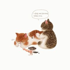 Pencil Illustration, Character Illustration, Cat Dog Cartoon, Coaster Art, Fairy Drawings, Animal Action, Kawaii, Cute Cats And Kittens, Cat Drawing