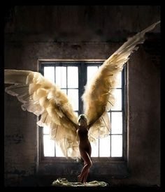 """""""My hair is black, but wings are white. My skin is dark, yet soul is light. Angels Among Us, Angels And Demons, Fallen Angels, Dark Angels, Foto Software, Photographie Art Corps, I Believe In Angels, Ange Demon, Angel Pictures"""