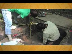 Archaeological Institute of America  Simulated Digs Video