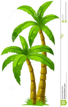 Two Palm Trees Stock Photos - Image: 34713773