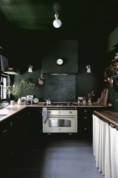 Lady and Pups' dark green moody kitchen