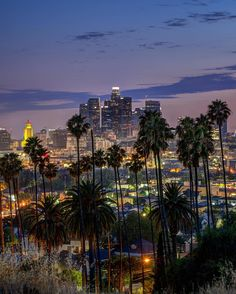 Up late in downtown LA. City Lights At Night, Night Light, Gas Lights, Seattle Skyline, Ocean, California, In This Moment, World, Places