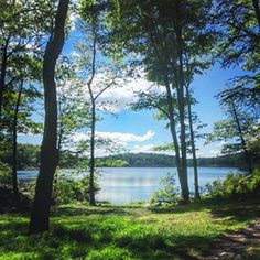 Lake Skenonto Loop | 10 Great Hikes Around NYC That You Can Get To Without A Car