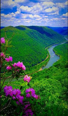 Travel Discover Science Discover Science Discover Gorgeous Landscape and Nature ! Beautiful Landscape Wallpaper, Beautiful Flowers Wallpapers, Beautiful Landscapes, Beautiful Gardens, Beautiful Nature Pictures, Nature Photos, Amazing Nature, Beautiful Places, Nature Images