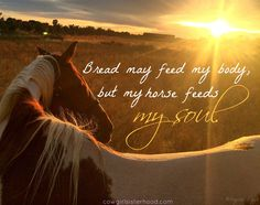 How many of our cowgirls out there agree? | Cowgirl Sisterhood
