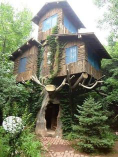 Fascinating use of a dead tree...It would be so fun to enter home through the trunk of a once grand tree...