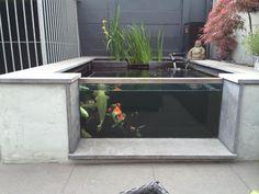 Fb koibook Fish Pool, Pond Design, Garden Ponds, Pond Waterfall, Pond Ideas, Garden Ideas, Koi, Japanese Gardens, Carp