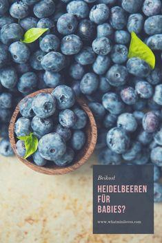 Sind Heidelbeeren gut für Babies? Und ab wann dürfen die Beeren auf den Speiseplan vom Nachwuchs? Alles was ihr wissen müsst, jetzt am Blog! #beikost #breikost #blw #babyledweaning #babybrei #foodfacts #beikostreife Baby Led Weaning, Lol, Blueberry, Fruit, Posts, Recipes For Toddlers, Berry, Messages, Blueberries