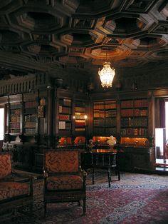 gothic library http://static.wix.com/media/fcb7f8a354b90f73cb23bae31acd89f4.wix_mp