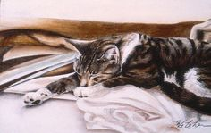 Stretched Out by Phil Welsher.Who can seem to get more comfortable than a napping cat?
