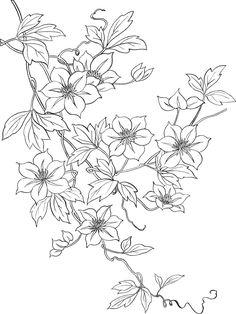 flower3664.jpg (1199×1600)