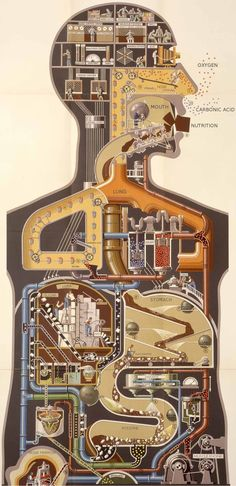 human body as if it were composed of machinery
