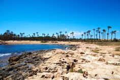 Cala Ferris is beach in Torrevieja, Alicante, Spain. Map and Photos for Cala Ferris and other beaches in the area are available. Alicante, Torrevieja Spain, Murcia, Picture Video, Beaches, Things To Do, Travel, Calla Lilies, Community