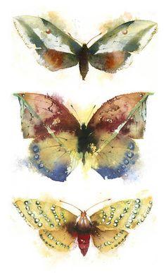 Art & Butterfly by Kate Osborne Butterfly Painting, Butterfly Watercolor, Butterfly Art, Watercolor Animals, Watercolor And Ink, Watercolour Painting, Painting & Drawing, Watercolours, Bug Art