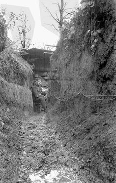 A great picture: telephone post in a muddy 1st line trench. Bois le Prêtre, August 1916.