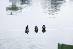 I tre pretendenti Parigi