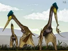 Throughout this blog I have alluded to and mentioned giant pterosaurs, but I've never actually described them or discussed them properly. As...