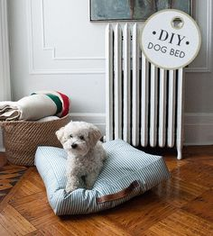 Easy DIY pet bed from Brett Bara at DesignSponge