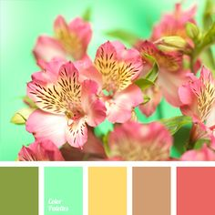 A very fresh contrasting color combination. Green contrasts with the delicate pastel shades of mint and warm yellow. Coral-pink adds extra brightness and freshness. The palette is cut for spring and looks great in the spring clothes of both adults and kids.