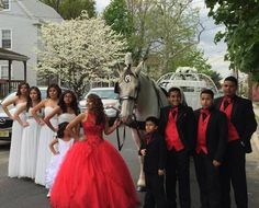 La Quinceanera and her court with Duke and our Cinderella Carriage
