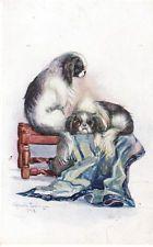 JAPANESE SPANIEL PAIR ARTIST DRAWN DOG POSTCARD JAPANESE CHIN OPHELIA BILLINGE