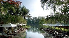Booking.com: Maya Ubud Resort & Spa , Ουμπούντ, Ινδονησία - 341 Σχόλια πελατών . Κάντε κράτηση σε ξενοδοχείο τώρα!