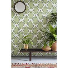 Ardmore Cameos by Cole & Son - Green - Wallpaper : Wallpaper Direct Tropical Wallpaper, Green Wallpaper, Amazing Wallpaper, Botanical Wallpaper, Print Wallpaper, Leopard Print Background, Cole Son, Cole And Son Wallpaper, Tropical Fabric