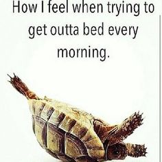 The struggle is real... especially on a Monday morning!