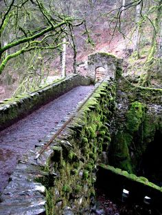 Stone bridge at The Hermitage site in Dunkeld, Scotland. The bridge dates to 1770.