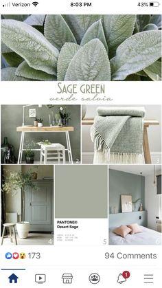 Sage Green Bedroom, Living Room Green, Boho Living Room, Green Rooms, Living Room Decor, Green Bedroom Colors, Sage Green Walls, Green Sage, Paint Colors For Home