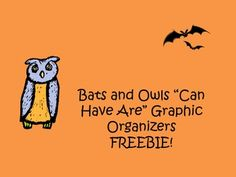 """FREE Bats and Owls """"Can Have Are"""" Graphic Organizers"""
