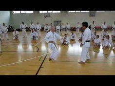 Kawasoe Sensei at JKA Shotokan Ireland Seminar May 2016 Karate Kata, Basketball Court, Soccer, Ireland, Youtube, Futbol, European Football, Irish, European Soccer