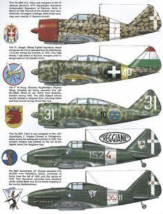 RE. 2000 G.A. Falco