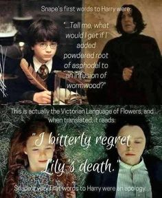 Just looked it up, according to Victorian Flower Language, asphodel is a type of lily meaning 'My regrets follow you to the grave' and wormwood means 'absence' and also typically symbolized bitter sorrow. JK Rowling continues to amaze me the amount of research she put into this series...