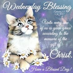 Wednesday Blessing.. Have a Blessed Day! May the lord keep each and every one of you that share this board and your families may he give you peace and strengthening you I plead the blood of Christ over each you in Christ name amen!!! {BLESS}