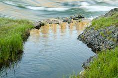 Yellowstone River, Wyoming, USA