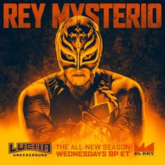Rey Mysterio / King Of Mystery Rey Mysterio 619, Wwe Lucha, Best Wrestlers, Lucha Underground, Jeff Hardy, Hello My Love, Professional Wrestling, Wwe Superstars, Mma