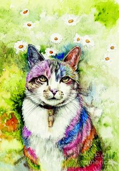 Rainbow Cat by Morgan Fitzsimons - Rainbow Cat Painting - Rainbow Cat Fine Art Prints and Posters for Sale I Love Cats, Crazy Cats, Cool Cats, Fantasy Paintings, Animal Paintings, Watercolor Cat, Cat Colors, Cat Drawing, Beautiful Cats