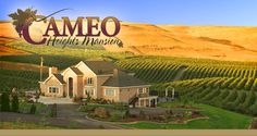 Cameo Heights Mansion - Touchet - USA
