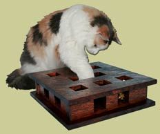Cat puzzle toy.  Your cat plays with the toys in the maze to try and get them out (or just bats them around).