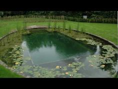 ▶ Natural Swimming Pools - YouTube  A montage of Woodhouse Natural Swimming Pool's finished projects, including formal and informal natural swimming ponds, swimming pool conversions and part self-build pools.
